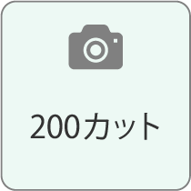 200カット