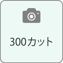 300カット